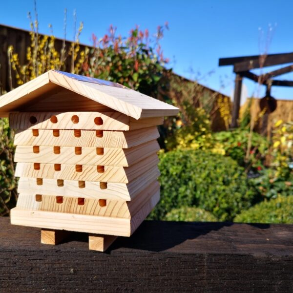 Bee Hotels