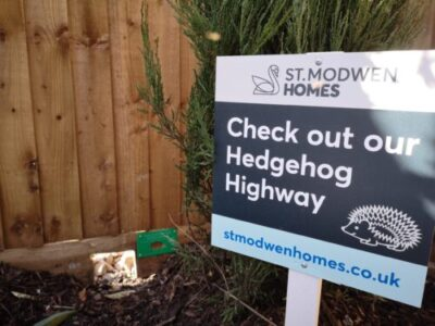 Hedgehog Highway image