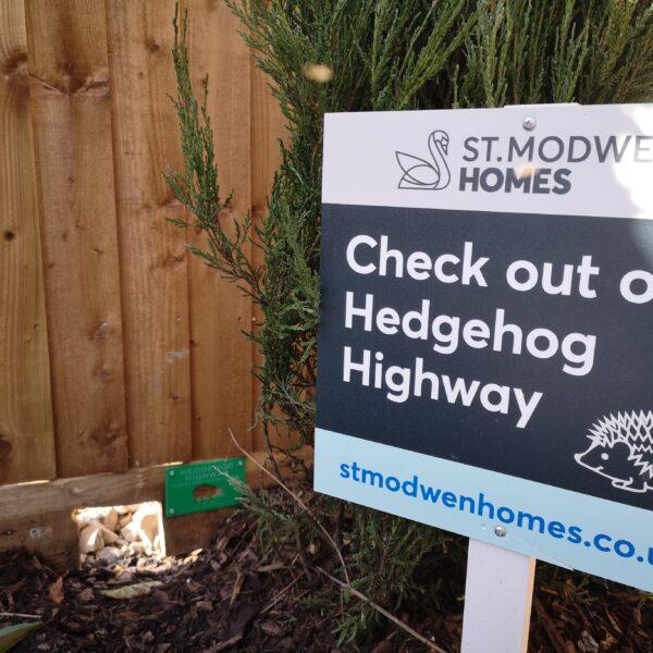 Hedgehog Highway